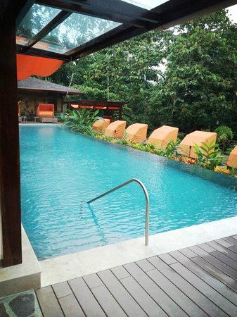 Nayara Resort Spa & Gardens: Poolside