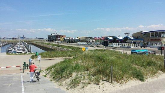 Het Zandhuis : The beach close by