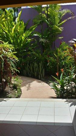 Alma del Pacifico Beach Hotel & Spa: Garden in Garden Bungalow