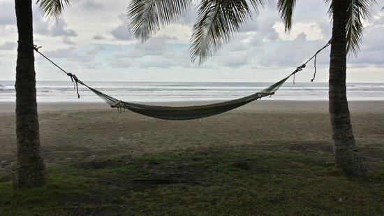 Alma del Pacifico Beach Hotel & Spa: Hammock by the Ocean