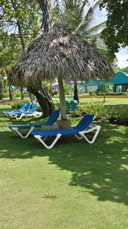 Alma del Pacifico Beach Hotel & Spa: By the Beach