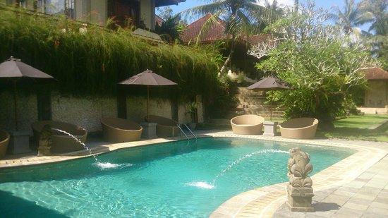 Hotel Villa-Ubud: by the pool