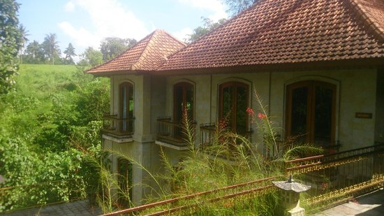 Hotel Villa-Ubud: grounds