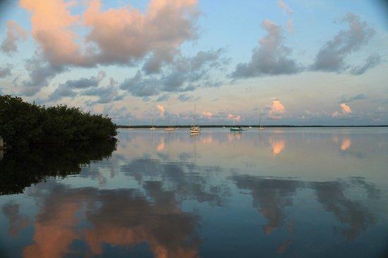 Hampton Inn Key Largo : sunrise on their beach