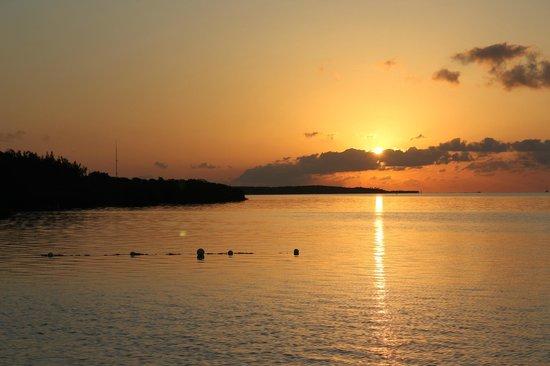 Hampton Inn Key Largo: sunset on their beach