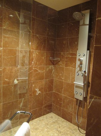 Seneca Allegany Resort & Casino : amazing shower!!!