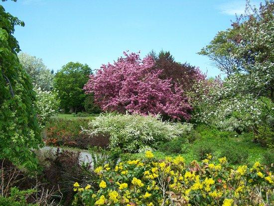 Jardin Roger Van Den Hende Entree Gratuite Picture Of Jardin