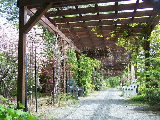 Jardin botanique roger van den hende park 2480 for Boulevard jardin botanique