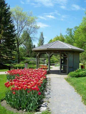 Le pavillon d\'accueil et la période des tulipes, Jardin Roger-Van ...