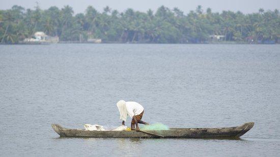 Ramada Resort Cochin: real piece in backwaters