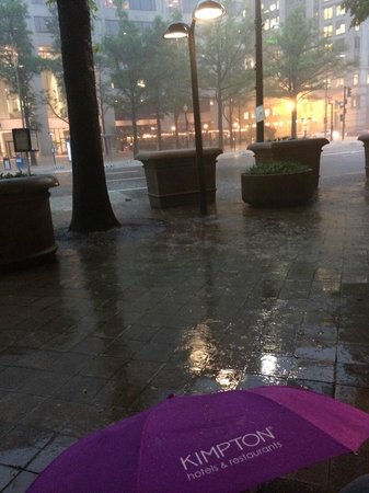 The Donovan, A Kimpton Hotel: Complimentary Umbrella