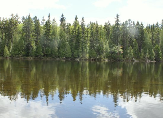 Parc national du Canada de la Mauricie : Worth the 2 hour and half drive from Montreal