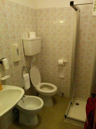 Hotel Des Alpes : bagno