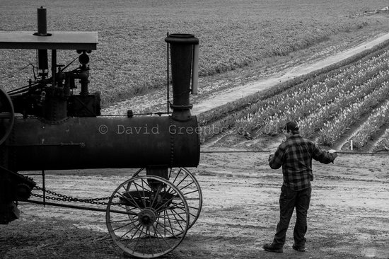 Wooden Shoe Tulip Farm: An old tractor