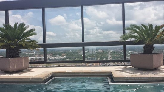 Omni Austin Hotel Downtown: View from the rooftop pool