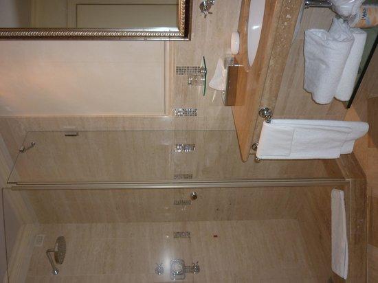 Albergo Terminus Hotel : Bathroom 325