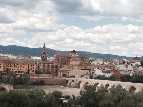 NH Cordoba: View from the roof terrace!