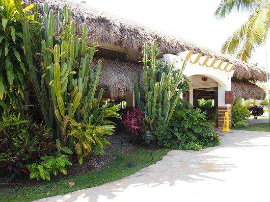 Casa Marina Beach & Reef : Mexicaans/ Italiaans restaurant