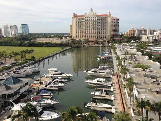 Hyatt Regency Sarasota: My room was on the Marina side of the hotel, 6th floor--pool is directly below.
