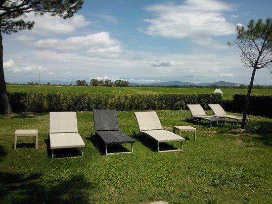 Fattoria San Lorenzo : giardino privato con lettini