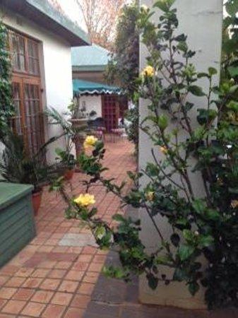 Village Green Guest House : Courtyard view