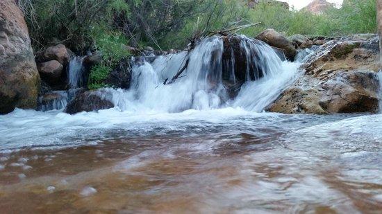 The Wildland Trekking Company: canyon