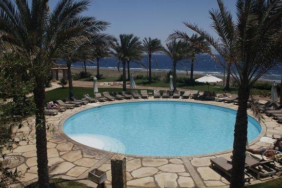 Dahab Paradise: poolside