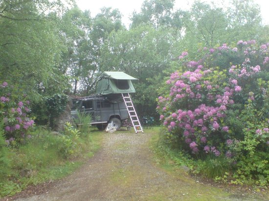 Beara Camping: secluded sheltered pitch