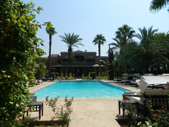 Palais de l'O : La vuen la piscine, les palmiers...