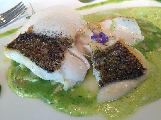 Martin Berasategui : Fisk (seabass)
