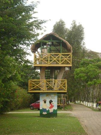 Hotel Fazenda Hipica Atibaia : Casa na árvore