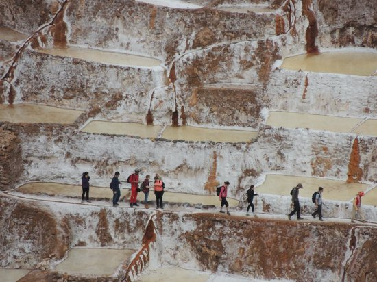 Salinas de Maras: Another close-up to show how big these mines are