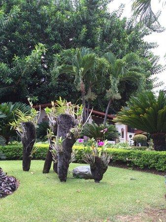 El Embajador, a Royal Hideaway Hotel: jardines