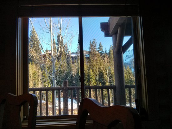 Black Bear Lodge: This appears to be the view from most rooms in the lodge