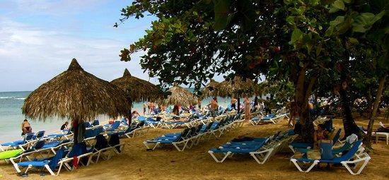 Grand Bahia Principe El Portillo : beach