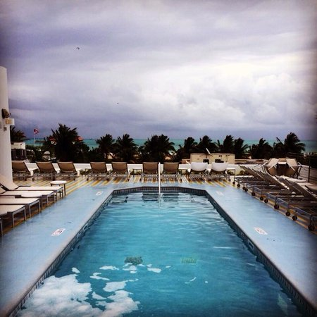 The Hotel of South Beach: Piscine