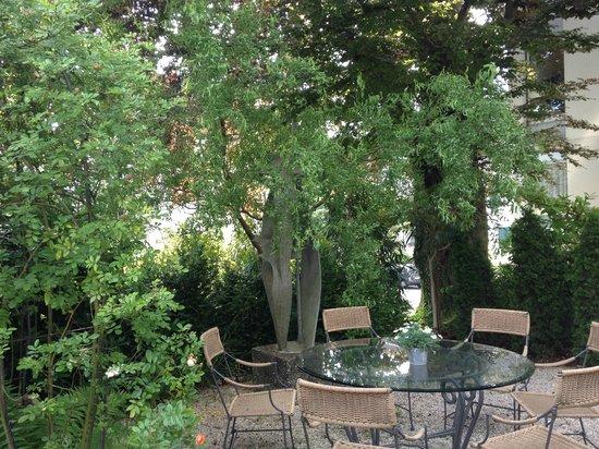 Engimatt City-Gardenhotel : the garden
