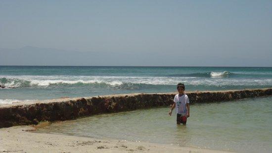 Grand Palladium Vallarta Resort & Spa: Alberca con agua de mar.
