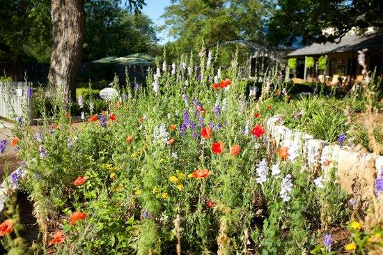Fredericksburg Herb Farm - Sunday Haus Cottages: Courtyard garden