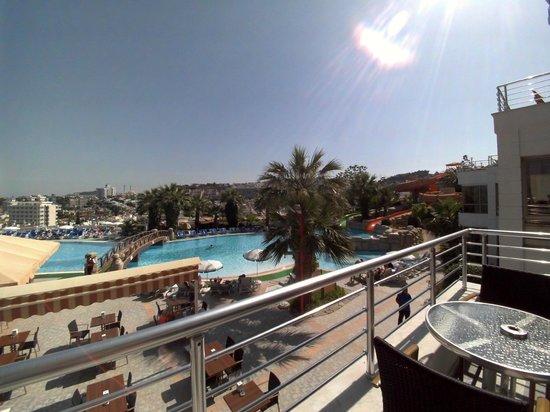 Palmin Hotel : pool view