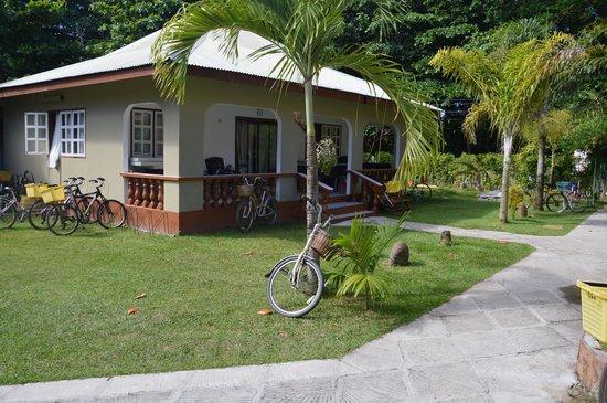 Villa Authentique: garden