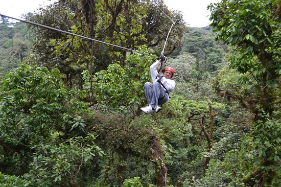 Selvatura Park: canopy