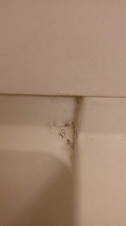 Econo Lodge Inn & Suites - Williamsburg: Dirty tub 2