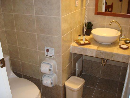 Tierra Viva Cusco Centro : bathroom