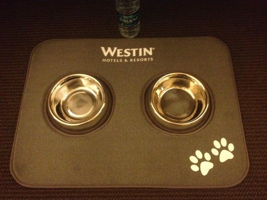 The Westin Chicago River North: Doggie bowls courtesy of The Westin