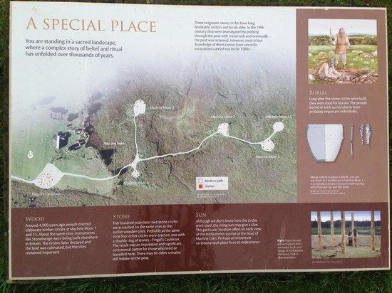 Machrie Moor Stone Circles: Machrie Moor