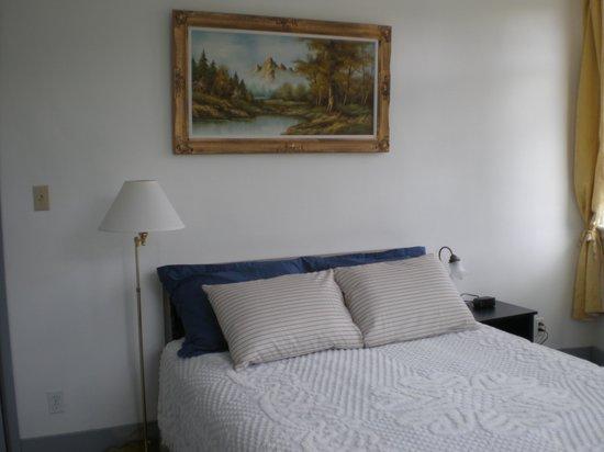 Chameleon Hotel: Queen bed