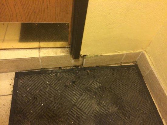 BEST WESTERN Alamo Suites: Rear Entrance