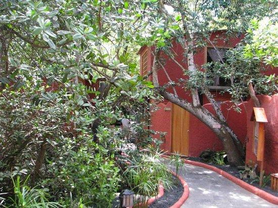 Red Mangrove Aventura Lodge : Entry to Aventura Lodge