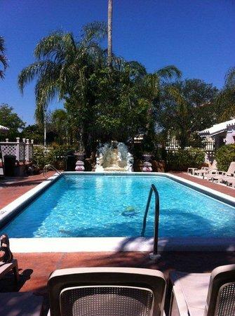 Richard's Motel : Pool